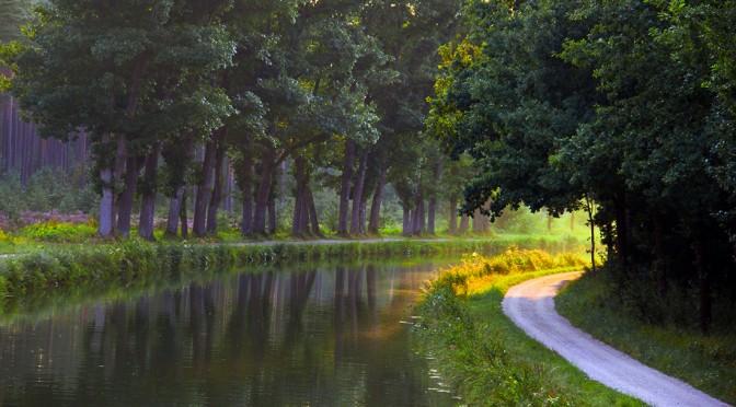 Kräuterführung am alten Kanal