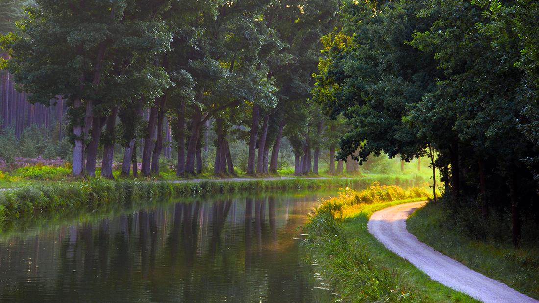 Kräuterspaziergänge am alten Kanal